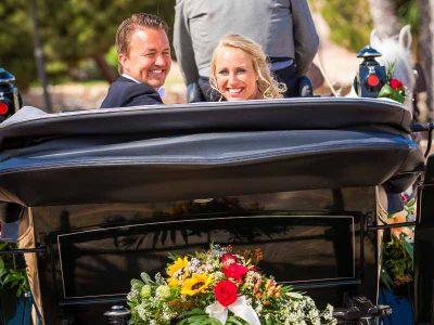 wedding-services-seville-horse-carriage-1