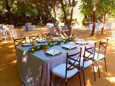 seville-bodega-wedding-14